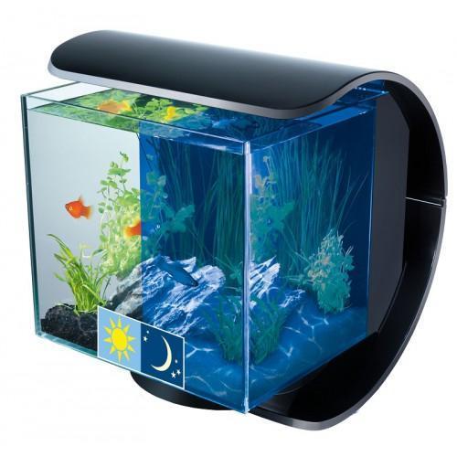 Фотосъемка аквариумов для каталога