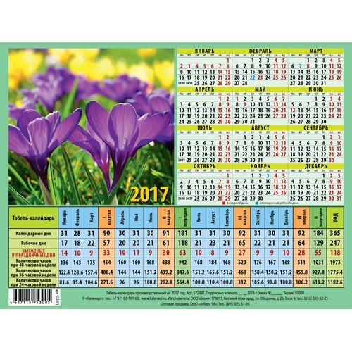 Фотограф для фотосъемки календарей