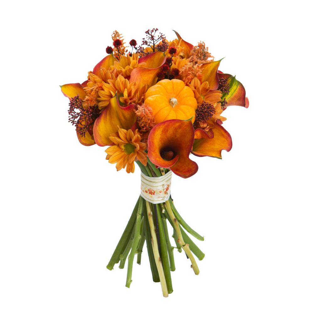 Фотограф для фотосъемки цветов