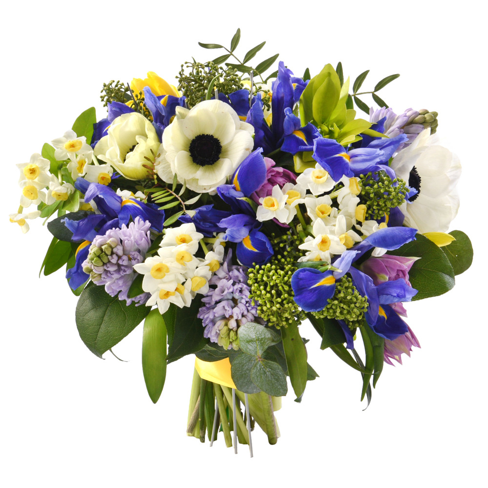 Фотосъемка цветов для каталога