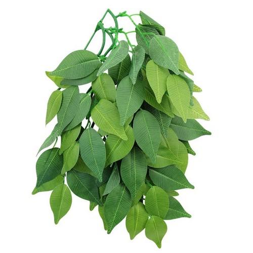 Фотограф для фотосъемки растений
