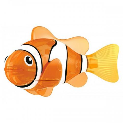Фотограф для фотосъемки аквариумных рыбок